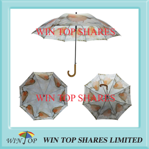 European Market vivid Wild bird sublimating Umbrella