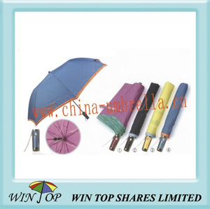 "23"" 2 Folds Metal Fashion Umbrella"